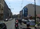 Dzikowisko Kraków 2011